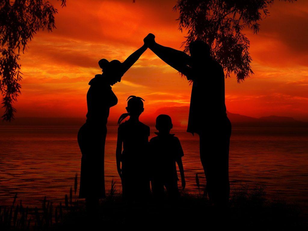 Adoption plénière : les règles juridiques